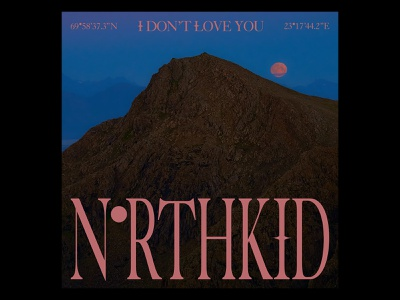 NORTHKID - I DON'T LOVE YOU serif typography brown sunrise sunset mountain blue pop norway artwork single cover artist music