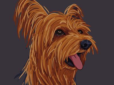 Dalí portrait yorkie pet animalillustration dogillustration dog animal children art children book illustration art illustration