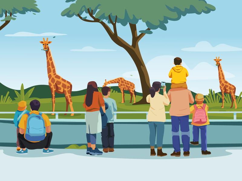 zoo zoo character illustration illustartion vector