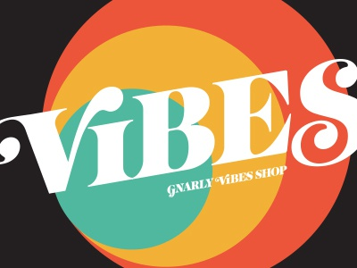 Vibes Tee Shirt gnarly 70s typography t shirt