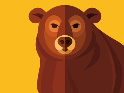 Animal cards: The Bear forest bear nature flat cute illustration card animal