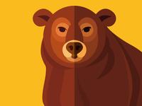 Animal cards: The Bear