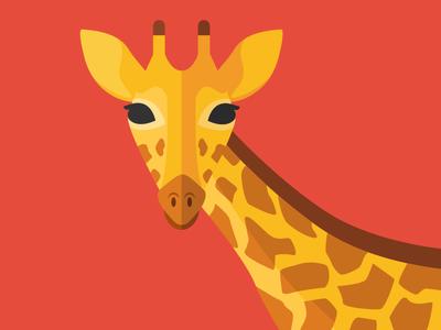 Animal cards: The Giraffe savannah giraffe nature flat cute illustration card animal