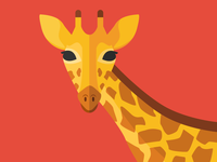 Animal cards: The Giraffe