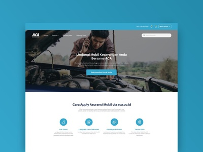 ACA Insurance Website
