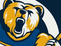 Da Bears - Continued