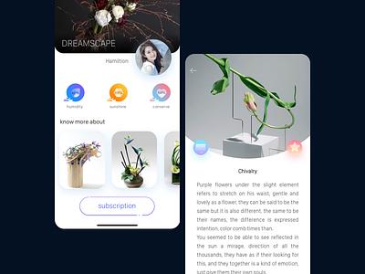 Flower arrangement art APP app designers breakpoint gradual change app design app ui