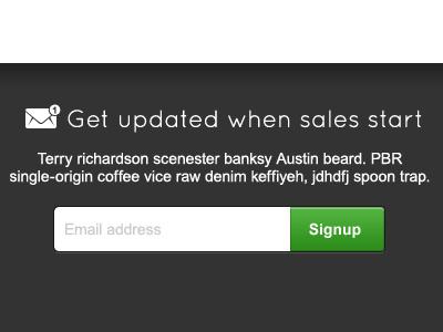 Get updated when sales start signup alert input