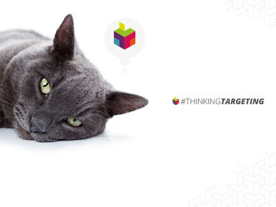 TT MEDIAlab - Concept 5 of X concept art direction design brand branding ux