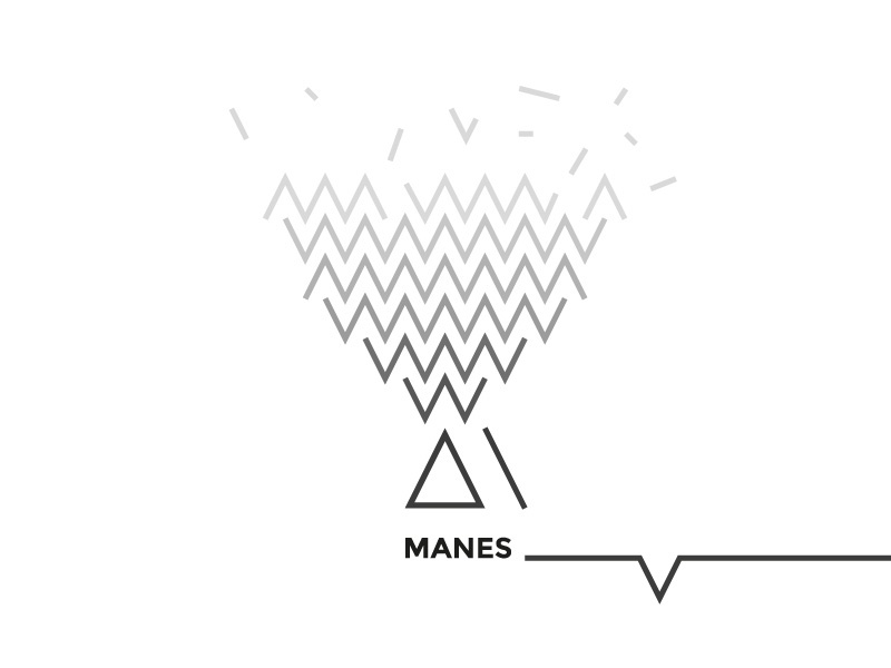 Manes brand concept branding design concept logo