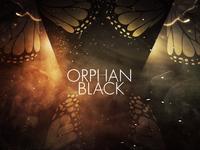 Orphan Black Styleframe