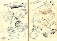 Sketches from my trip to San Francisco 2