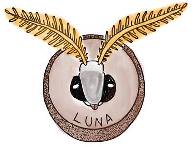mounted Luna Moth head luna moth procreate app procreate procreate art digital brushes digital design digital art digital painting digital illustration