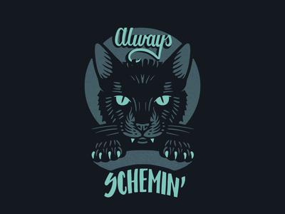 Kitter Be Schemin'