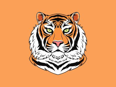 Bengal Tiger dribbble zoo mascot print portrait drawing illustration king royal beast animal vector orange color wildcat head face amur bengal tiger