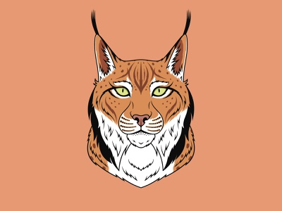 Brown Lynx dribbble design zoo mascot predator print portrait illustration cartoon king royal beast animal vector head face cat brown bobcat lynx