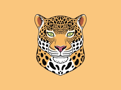Jaguar Cat dribble zoo mascot wildcat portrait illustration cartoon king royal beast spotted animal vector american head face cat panther leopard jaguar
