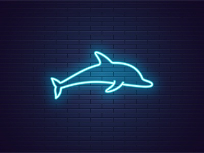 Neon Dolphin