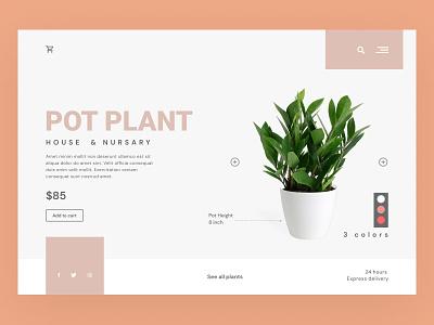 Pot Plant website design graphic design design flat logo design vector branding user experience landing page website design web design user inaterface ux ui pot plant