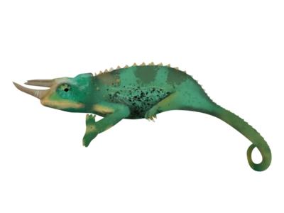 Chameleon Illustration design challenge designer texture brushes pets illustrator chameleon photoshop illustration graphic design