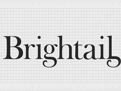 Brightail.com company name name ideas entrepreneurship business name domain branding agency brand naming design logo branding