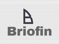 Briofin.com