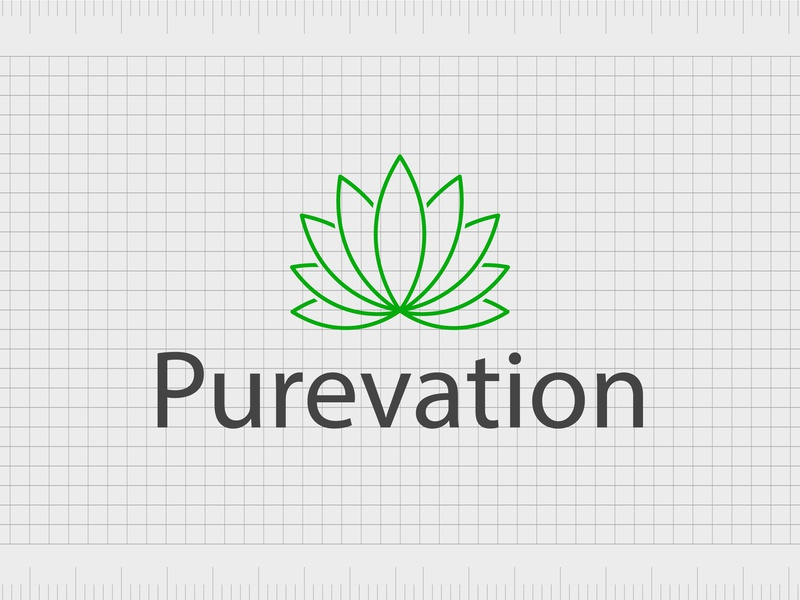Purevation.com identity web minimal lettering illustration typography website naming name ideas logo entrepreneurship domain design company name business name branding agency branding brand