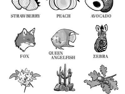 set of typograhy and illustrations wildlife leaf flower cactus fruits plant animal art web branding print vector pattern texture font icon design logo typogaphy illustration