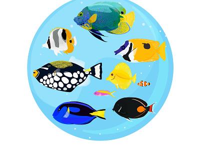 Set of tropical fish ocellaris clownfish ocellaris clownfish underwater yellow tang angelfish butterflyfish aquarium vector summer ocean sea design icons logo tropical fish illustraion
