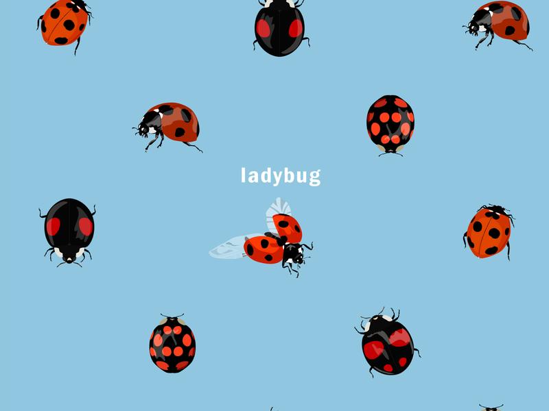 ladybugs plant leaf flying lego polkadot pattern nature ladybug insect design イラスト vector logo illustration