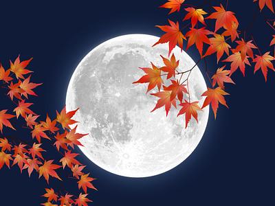 maple landscape design season vector portfolio web logo nature naight moon leaf leaves maple autumn illustration