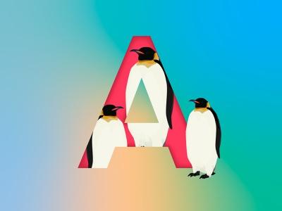 Penguin illustrator photoshop art designs logos alphabet decoration typography branding animal nature イラスト logo vector print penguin illustration design