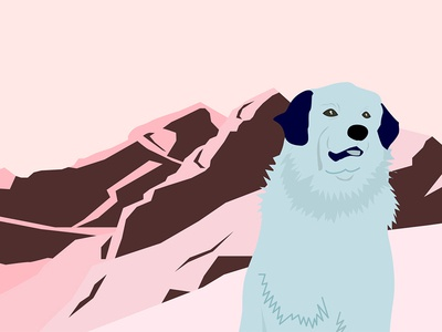 The blue dog and Pyrenees