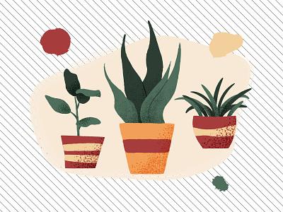 Houseplants vector illustration abstract shapes vector textures vector art houseplants illustration vector