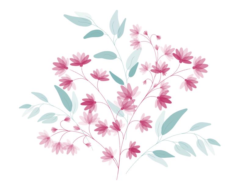 Sensitive digitaldrawing botanic sensitive graphicdesign graphic procreate leaves flower