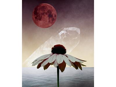 X digitaldesign design picture digital artistic artwork art moon flower collagee collage poster procreate