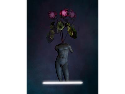 FADED design digitalart picture roses botanic flower modern sculpture procreate artwork artistic digitalgraphic digital collages collageart collage art collage art poster graphic