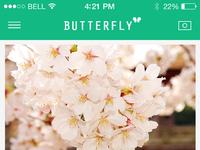 Butterfly960
