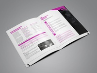 The Investment Opportunity Brochure Design