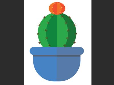 Cutie succulent 2