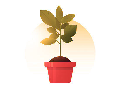 Grow! light sun light sun planter plant grow