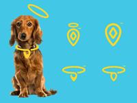 Pet Tracking Log Proposals