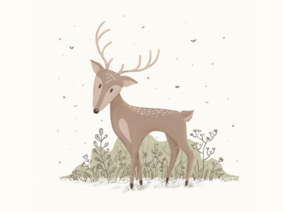 My Deer Friend