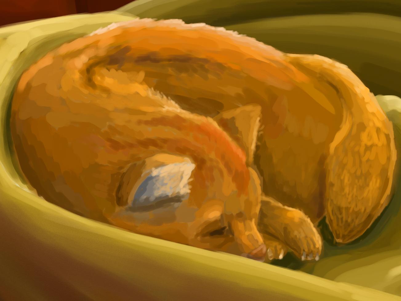 Sick Cat painting illustration deviantart digital drawing