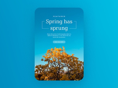 Spring has sprung newsletter flowers yellow blue spring