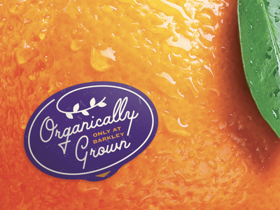 Big Fruit - 🍊 juicy organic poster fruit sticker label sticker orange fruit