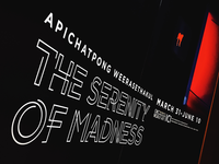Serenity of Madness Final Type