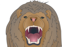 Lion head only