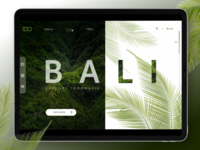 Travel Bali -Landing Page Design