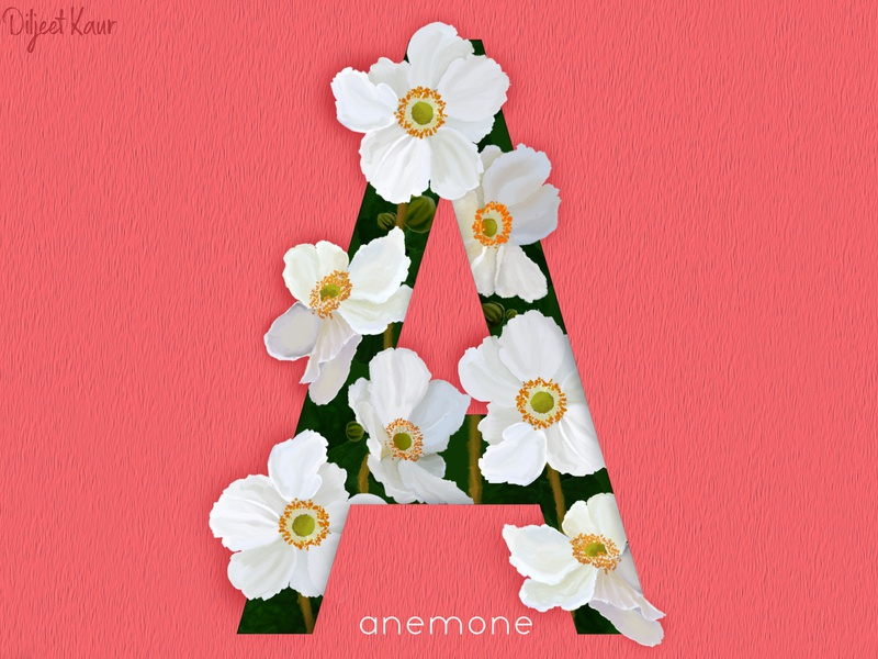 The letter series: A design art typography illustration digital painting design alphabet lettering letter
